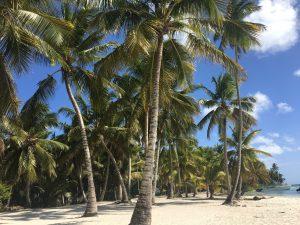 Les 3 plus belles plages de la République Dominicaine