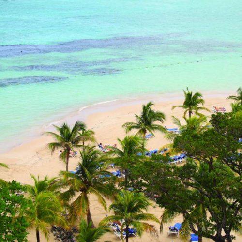 Partir en Jamaïque : informations pratiques